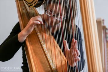 harpconcert, harprecital en muzikaal intermezzo door harpspeler Nanja Bakker